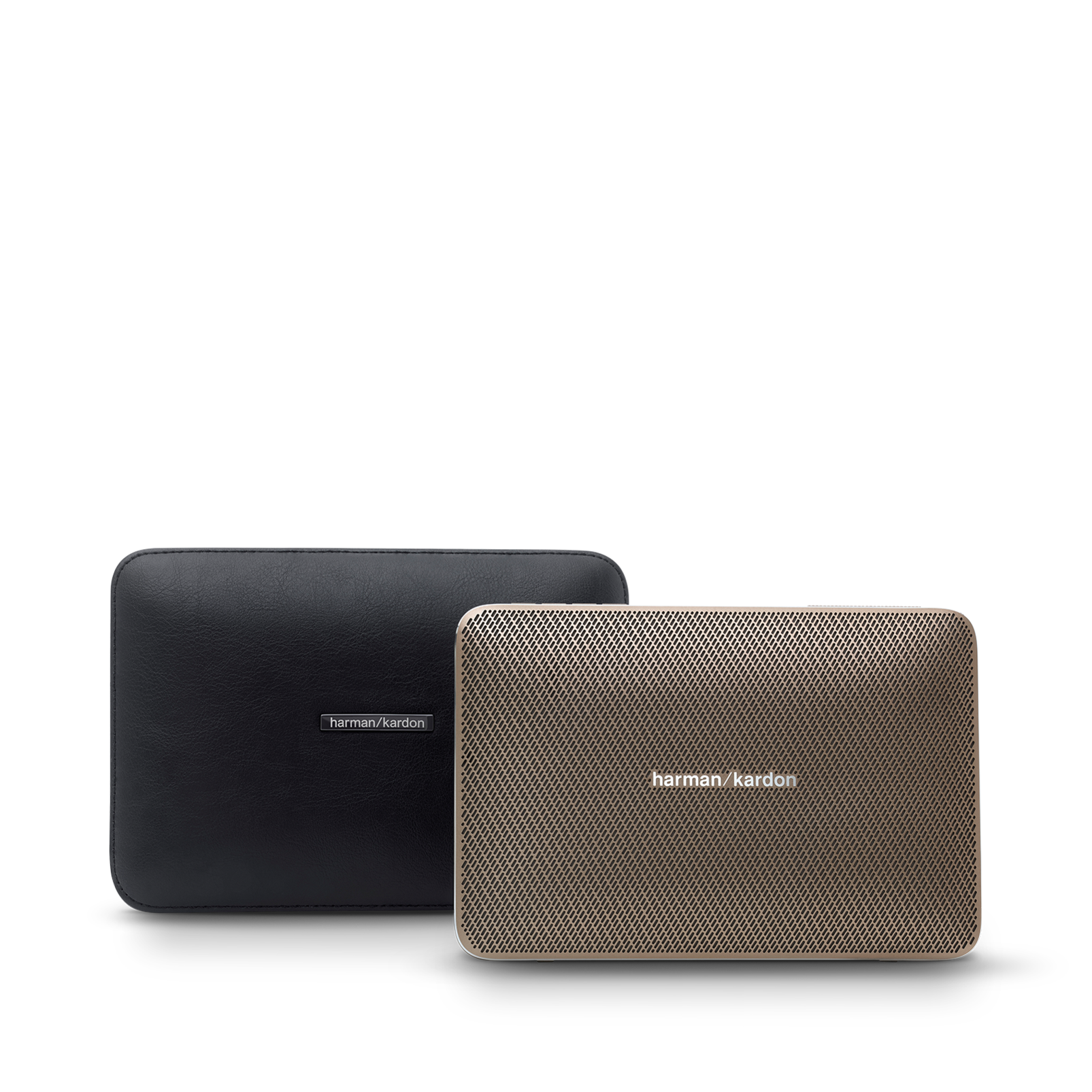 Esquire 2 Carrying Case